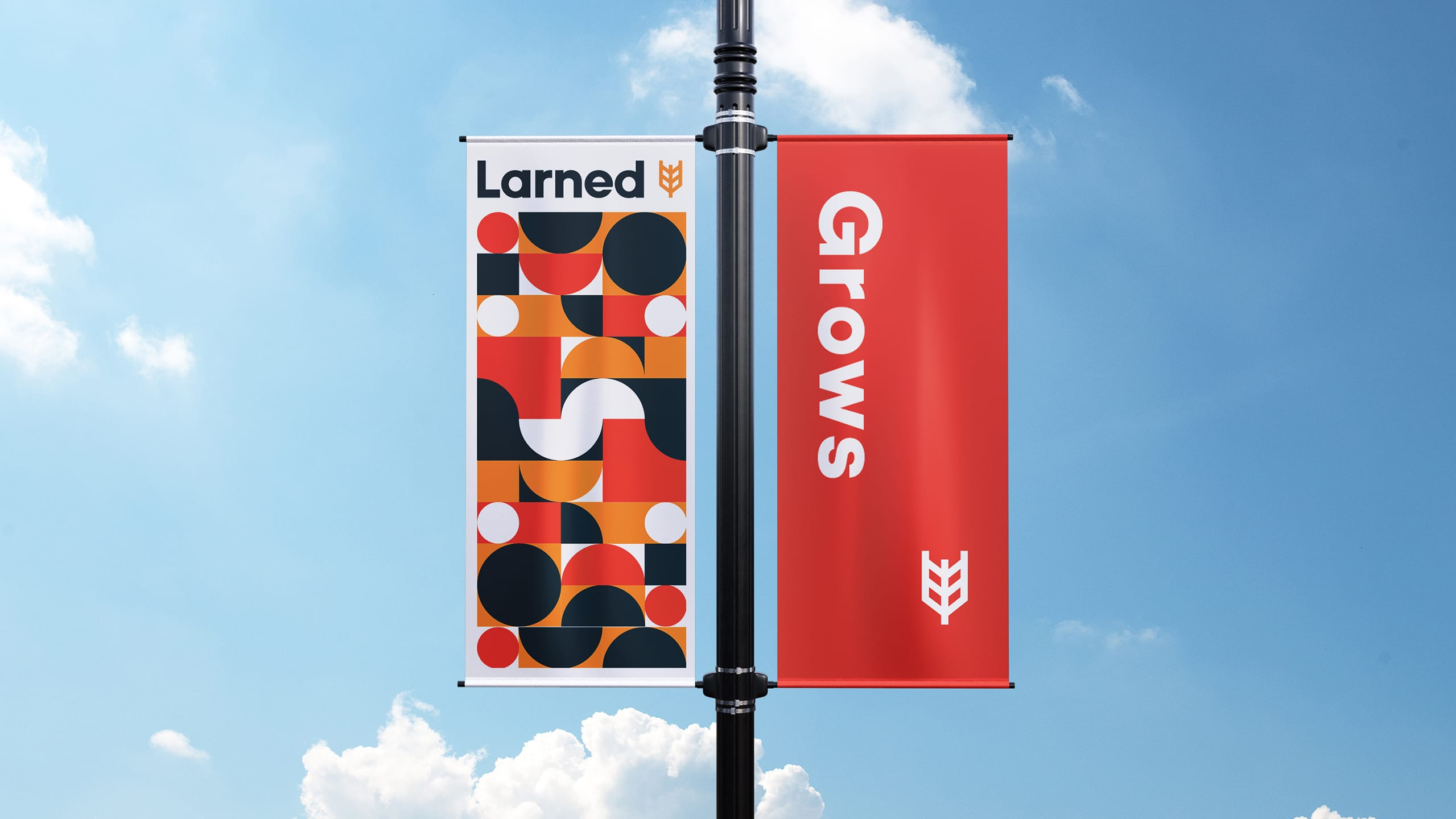 Larned Kansas Case Study